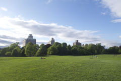 布鲁克林公园 免版税库存图片
