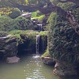 布鲁克林植物园 免版税库存图片