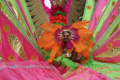 布鲁克林狂欢节纽约 免版税库存照片