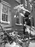 布鲁克林雪冬天 库存图片