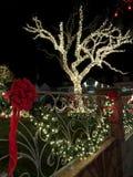 布鲁克林,纽约- 2017年12月20日- Dyker高度圣诞灯在假日装饰为 免版税库存图片