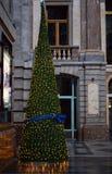 布鲁塞尔圣诞树 库存图片