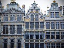 布鲁塞尔大广场的协会房子,布鲁塞尔,比利时 库存图片