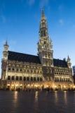 布鲁塞尔市政厅在夜 图库摄影