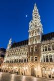 布鲁塞尔市政厅在夜 免版税库存图片