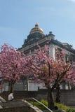 布鲁塞尔,比利时法院  库存照片