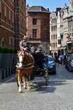 布鲁塞尔,比利时- 2015年5月12日:在传统马支架的司机在市布鲁塞尔附近 库存照片