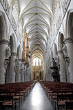布鲁塞尔-圣迈克尔哥特式大教堂教堂中殿  库存照片