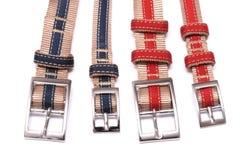 帆布带有红色和蓝色条纹的宠物衣领 免版税库存图片