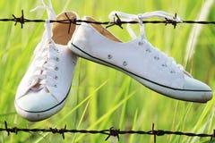 帆布鞋垂悬 库存图片