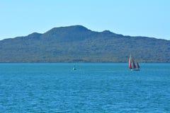 帆船在朗伊托托岛新西兰附近的游艇航行 库存照片