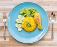 希拉勒食物,鸡Biryani用绿色酸辣调味品 库存图片