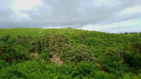 希普利突岩从黑突岩的Dartmoor视图 Dartmoor国家公园 德文郡 英国 免版税库存图片