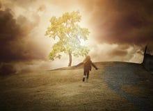 希望发光的树在小山的 免版税库存照片
