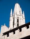 希罗纳细节大教堂  免版税库存图片