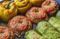 希腊传统食物Gemista 胡椒粉原料、蕃茄、夏南瓜用米,菜和草本 免版税库存图片