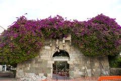 希腊和罗马城市损坏的地震古老门Kos海岛的 库存图片