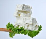 希腊希腊白软干酪 免版税库存照片