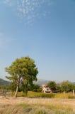 希腊房子横向结构树 免版税图库摄影