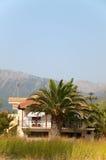 希腊房子横向结构树 库存照片