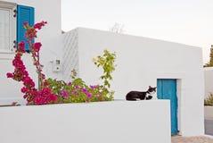 希腊房子海岛 库存图片