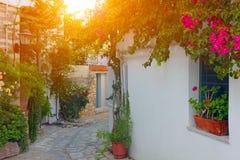 希腊海岛skiathos 免版税图库摄影