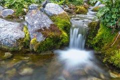 希腊溪小河水自然夏天 免版税库存照片