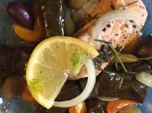 希腊烹调:三文鱼、葱、柠檬、橄榄、胡椒和Dolmades 库存照片
