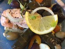 希腊烹调:三文鱼、葱、柠檬、橄榄、胡椒和Dolmades 库存图片