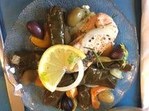 希腊烹调:三文鱼、葱、柠檬、橄榄、胡椒和Dolmades 免版税库存照片