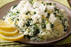 希腊烹调:与菠菜和希腊白软干酪克洛的spanakorizo米 库存照片