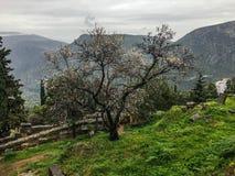 希腊的山 库存照片