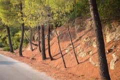 希腊自然 美丽如画的公园 免版税库存照片