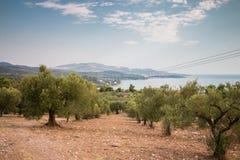 希腊自然 美丽如画的公园 库存图片