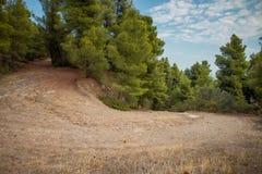 希腊自然 美丽如画的公园 免版税库存图片