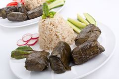 希腊语Dolmades用米和菜 免版税库存图片