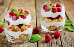 希腊酸奶莓饼干冷甜点 库存照片