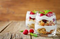 希腊酸奶莓饼干冷甜点 库存图片