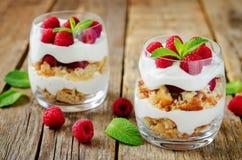 希腊酸奶莓饼干冷甜点 免版税库存图片