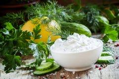 希腊酸奶调味汁、黄瓜和草本,选择聚焦 库存图片
