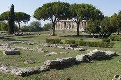 希腊paestum寺庙 免版税图库摄影