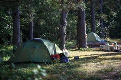 帐篷在根据太阳,黄色和绿色帐篷的森林里 免版税库存图片