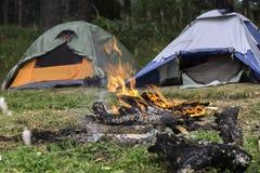 帐篷在森林里 库存照片