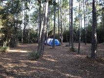 帐篷在森林-更加紧密 免版税库存照片
