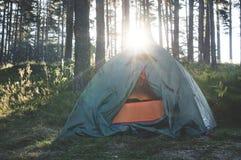 帐篷在阳光的森林里 库存照片