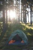帐篷在阳光的森林里 免版税库存图片