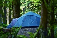 帐篷野营 免版税库存照片