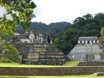 帕伦克,墨西哥废墟 库存图片