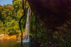 帕伦克,恰帕斯州,墨西哥:美丽的瀑布在晴朗的天气的Misol Ha 免版税库存图片