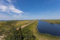 帕克河的盐水沼泽 免版税库存照片